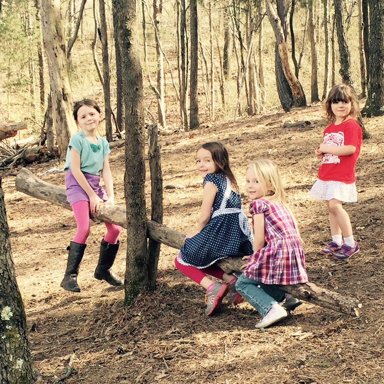 Mountain Laurel Montessori School.jpg