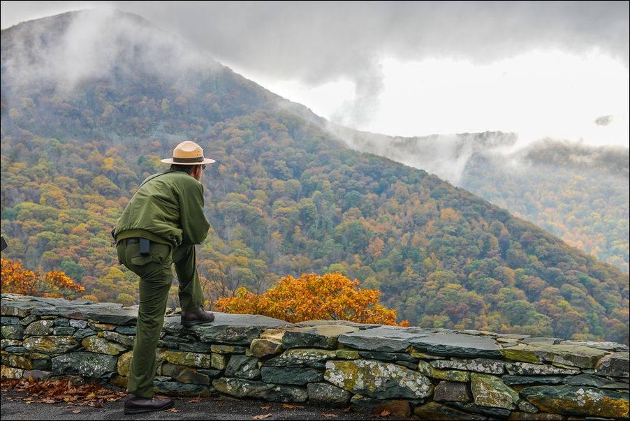 Shenandoah National Park Trust.jpg