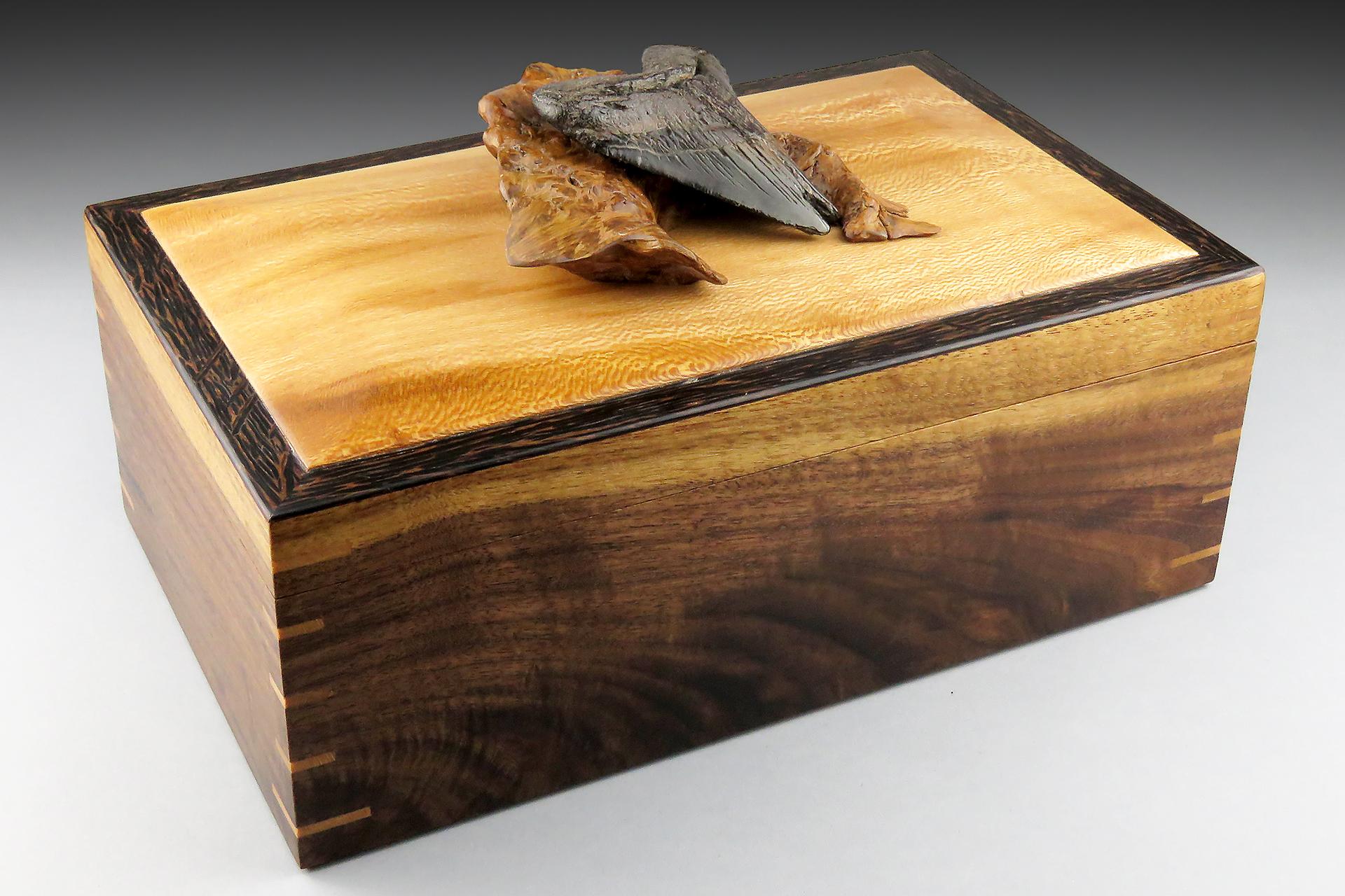 Megalodon Jewelry Box: $495