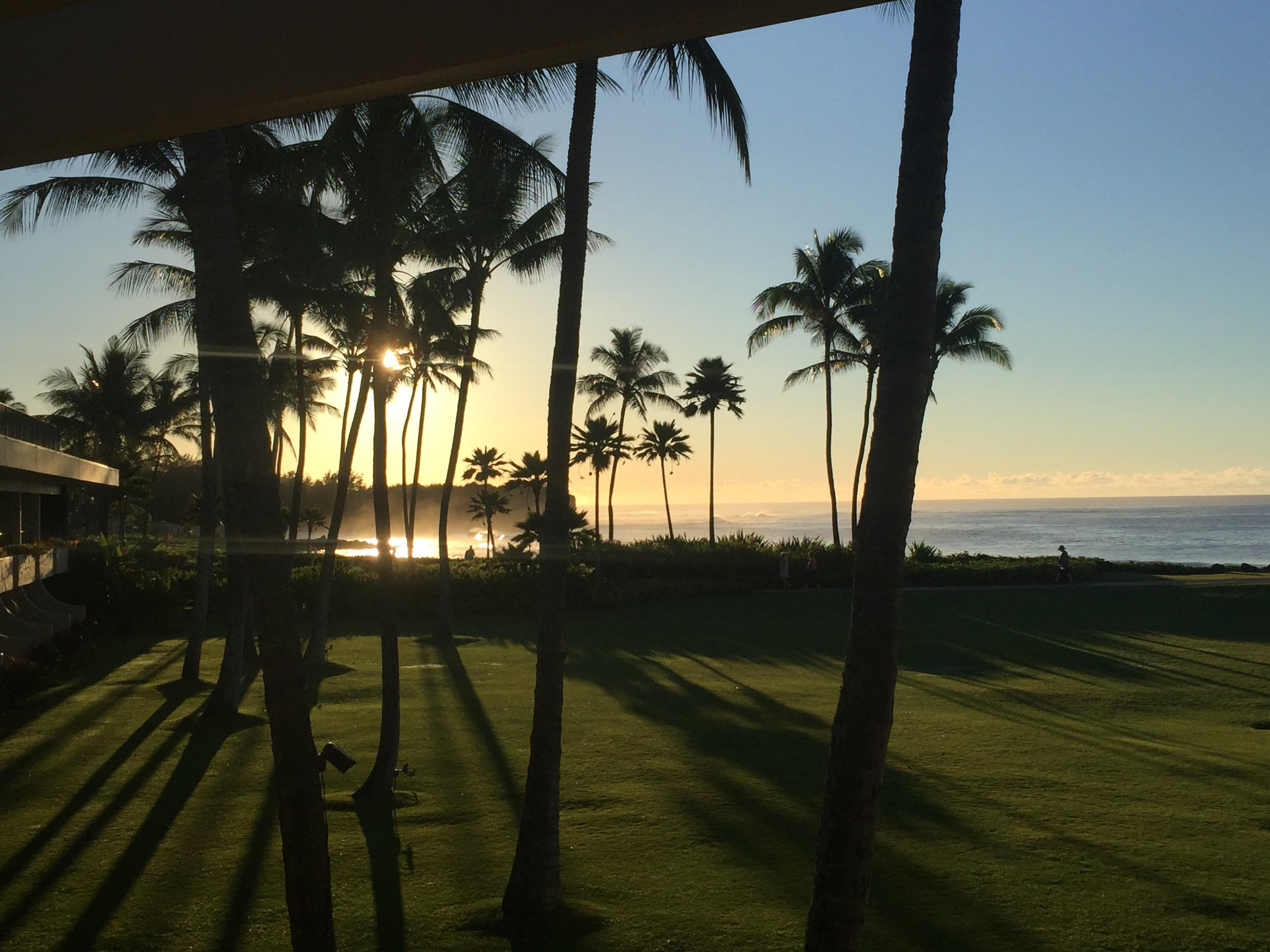 The 19th Stanford Symposium on Emergency Medicine at the Grand Hyatt on Kauai, Hawaii.