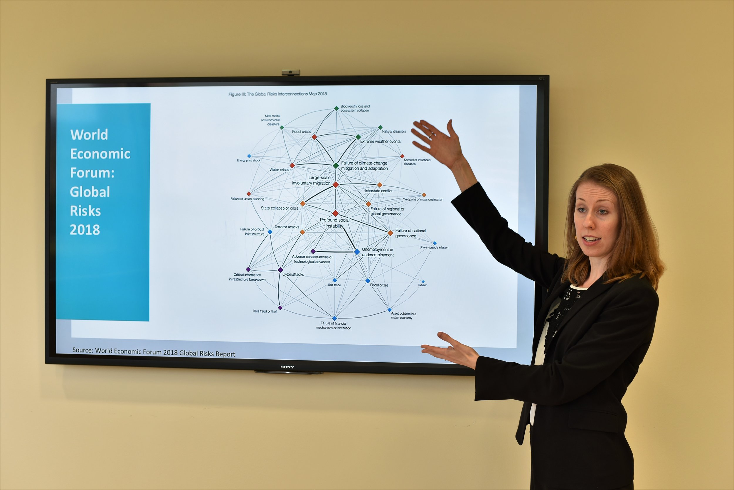 Kaitlyn Allen discusses the nexus of global risks and ESG investing at a private training.
