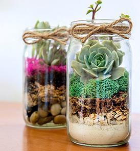 Mason Jar Terrarium Workshop - CLICK HERE to schedule a private event.