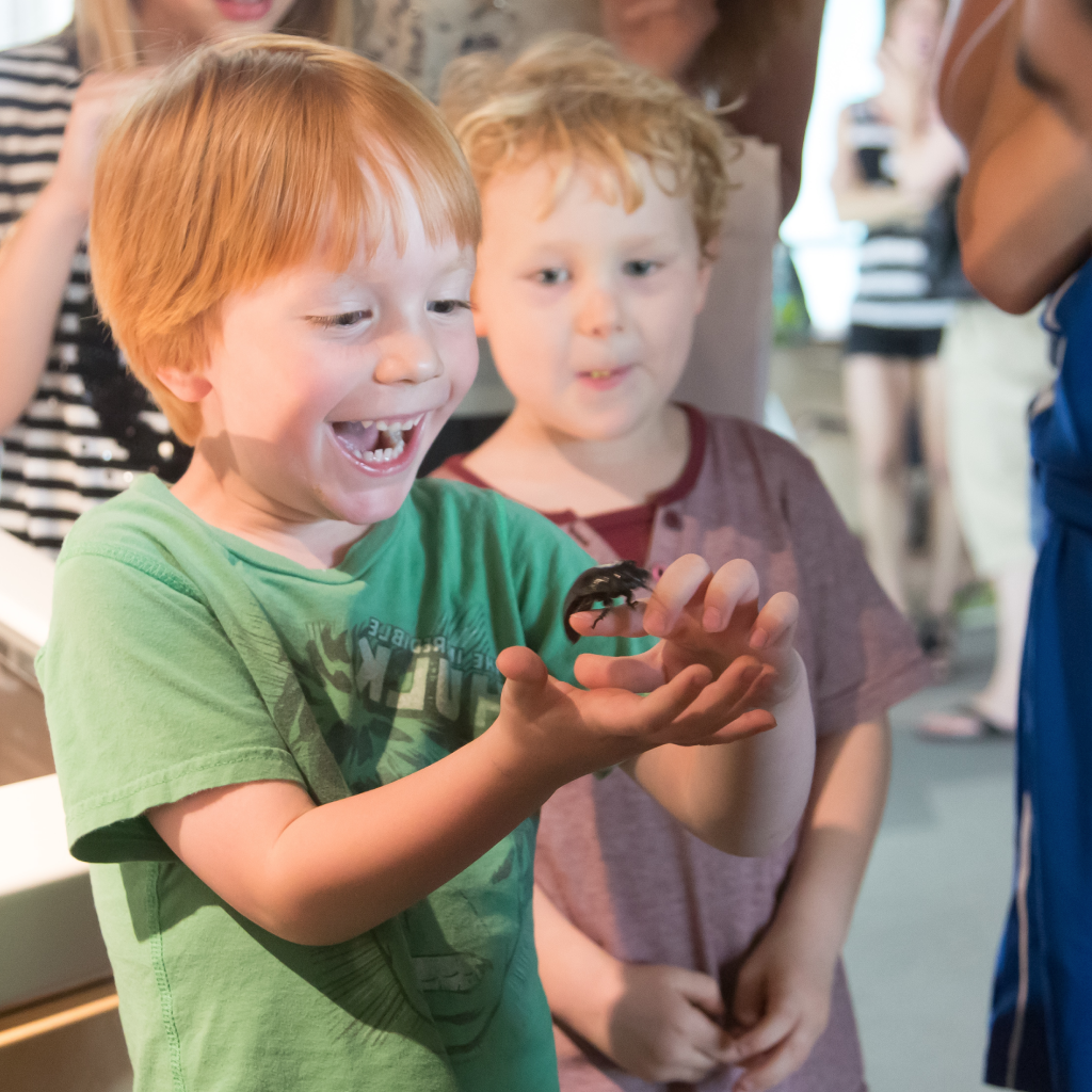 Programming + Events - The MAP hosts regularly scheduled programming for community members of all ages. From Little Explorers Club to Science Happy Hours, we've got something for learners of every age and interest.