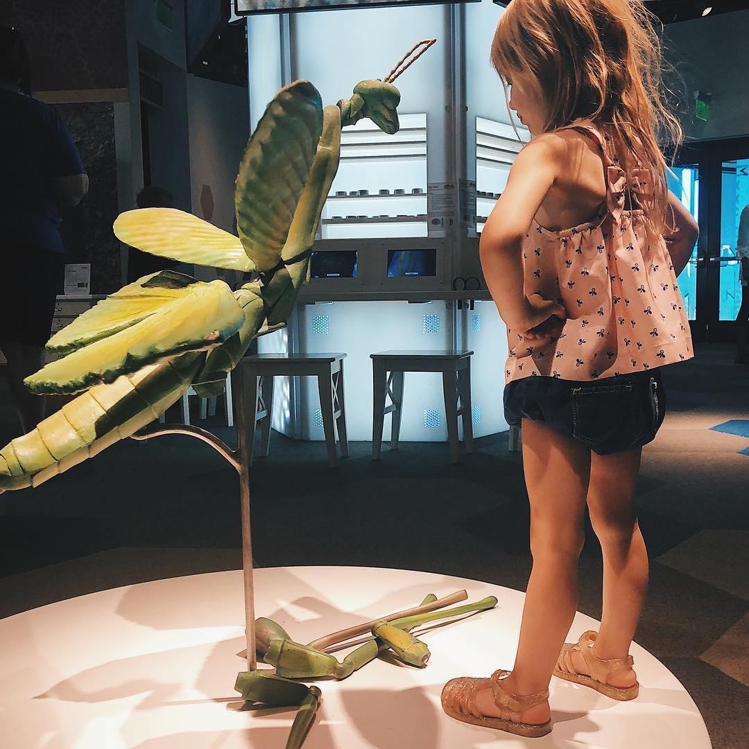 Girl w preying mantis DR.jpg