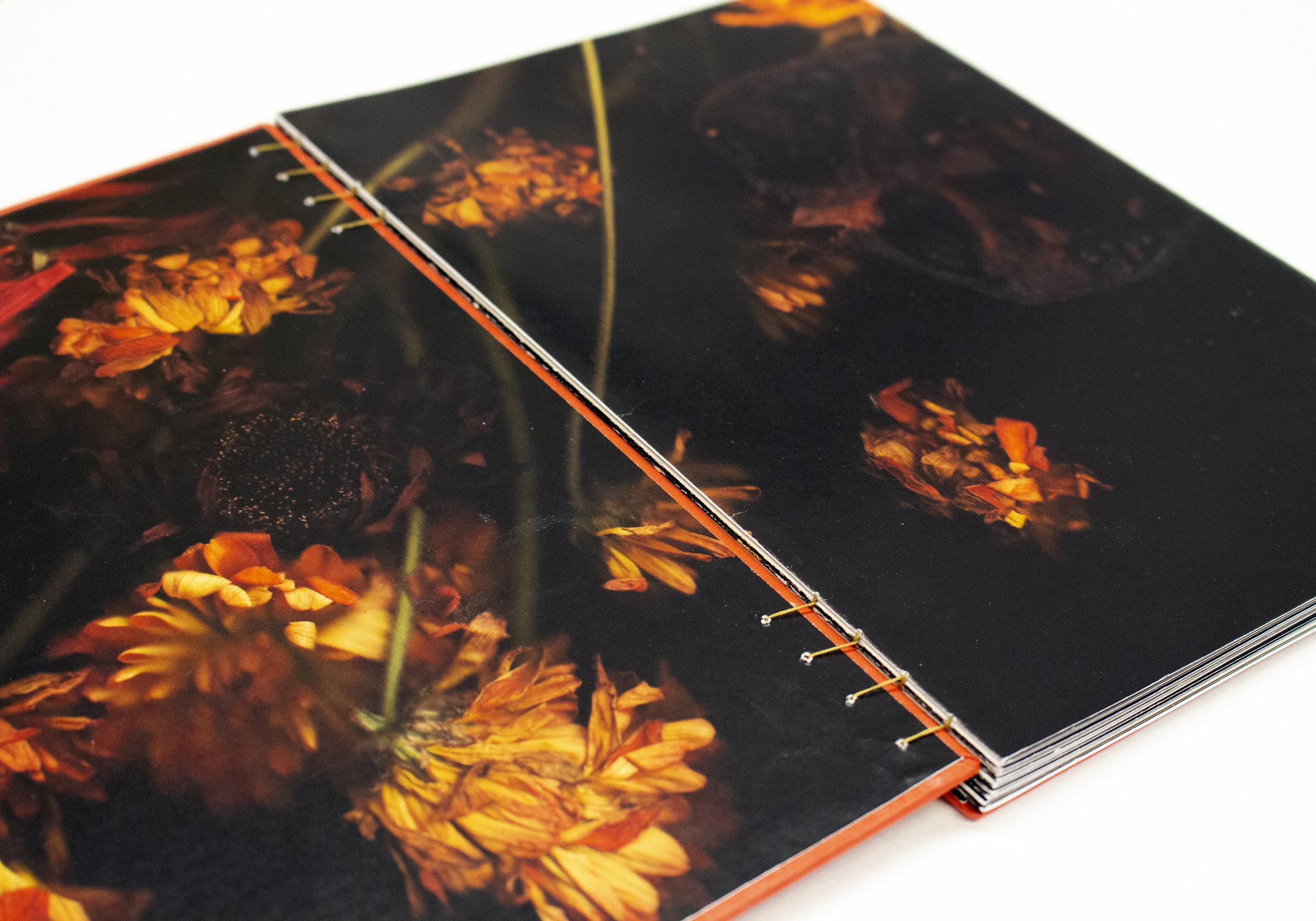 inside cover.jpg