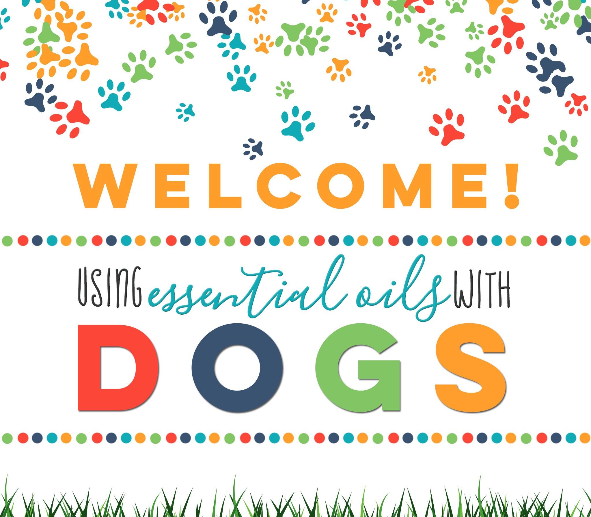 01-Dogs-Welcome.jpg