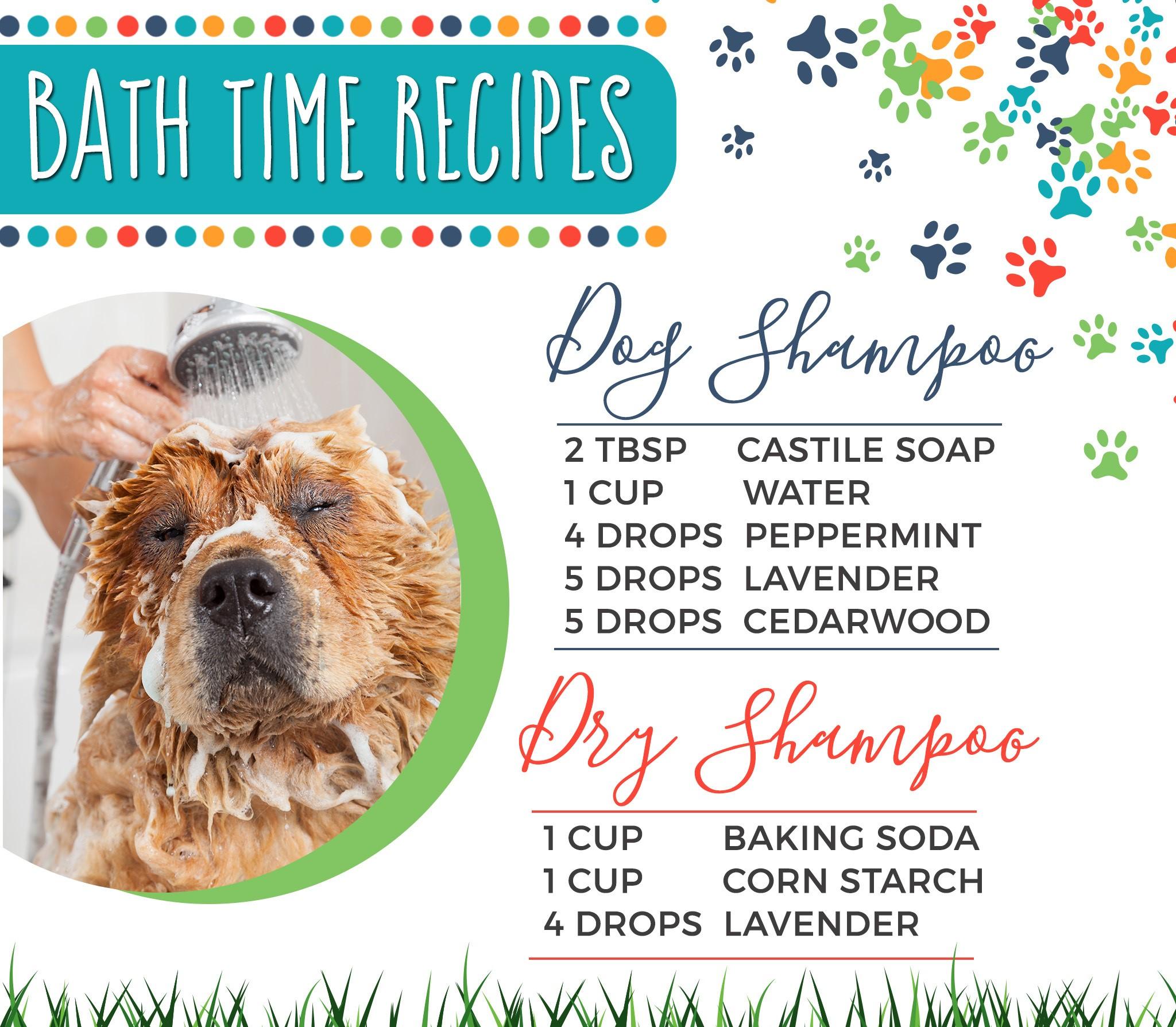 20-Dogs-Bath-Time.jpg