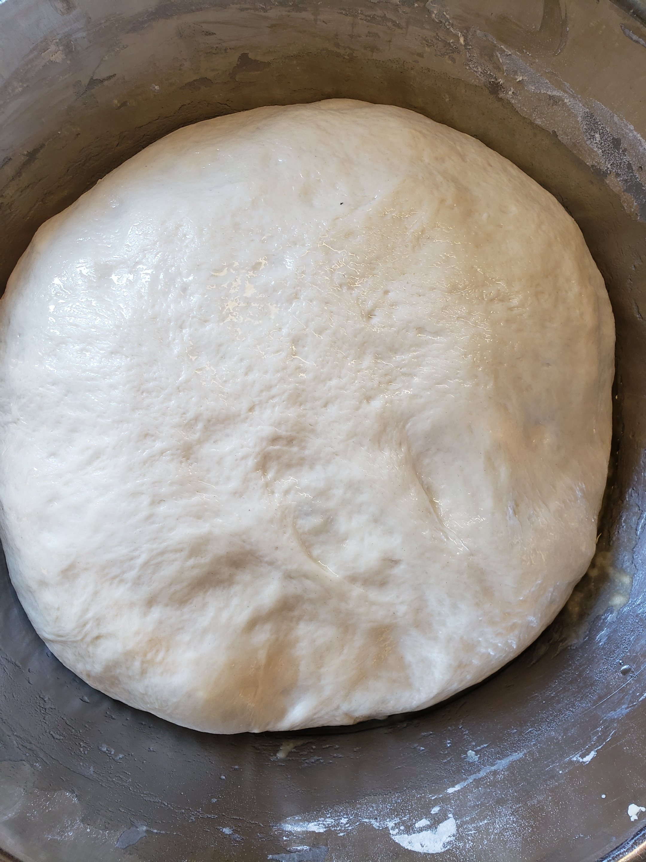 This is what your dough will look like after a slow proof.