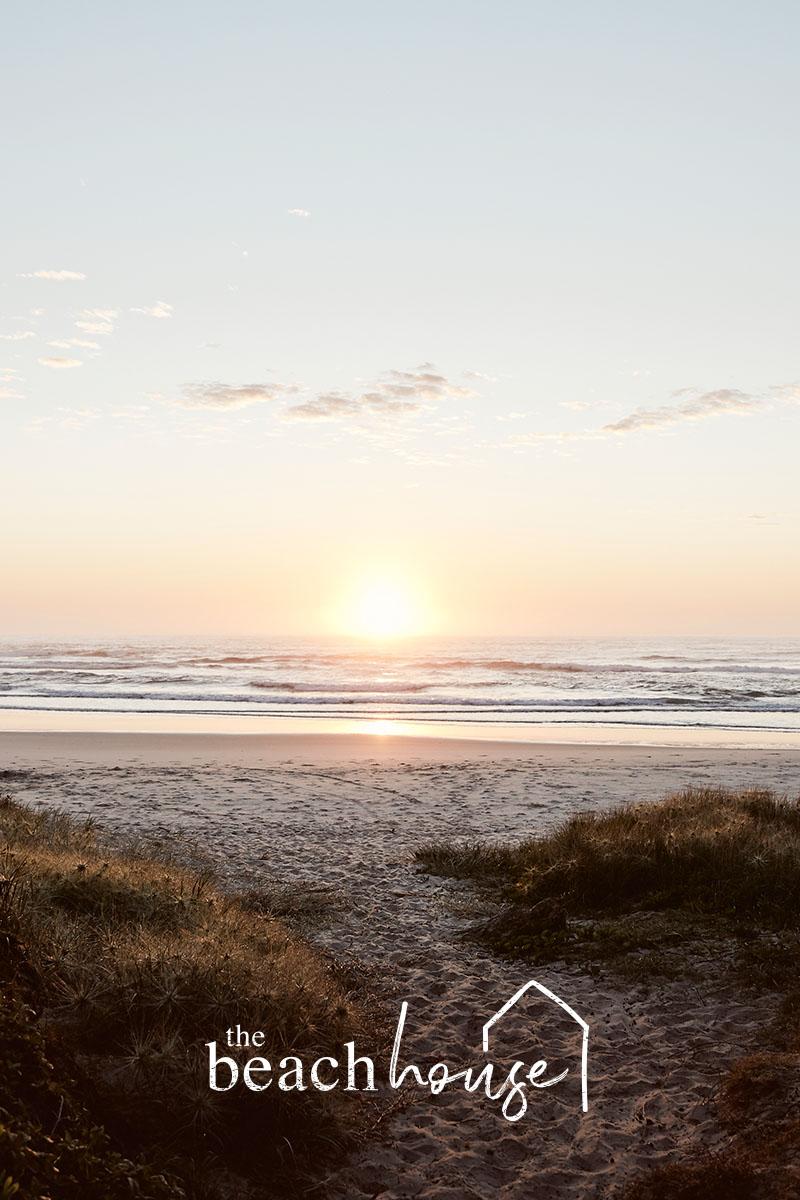 beachcollec.jpg