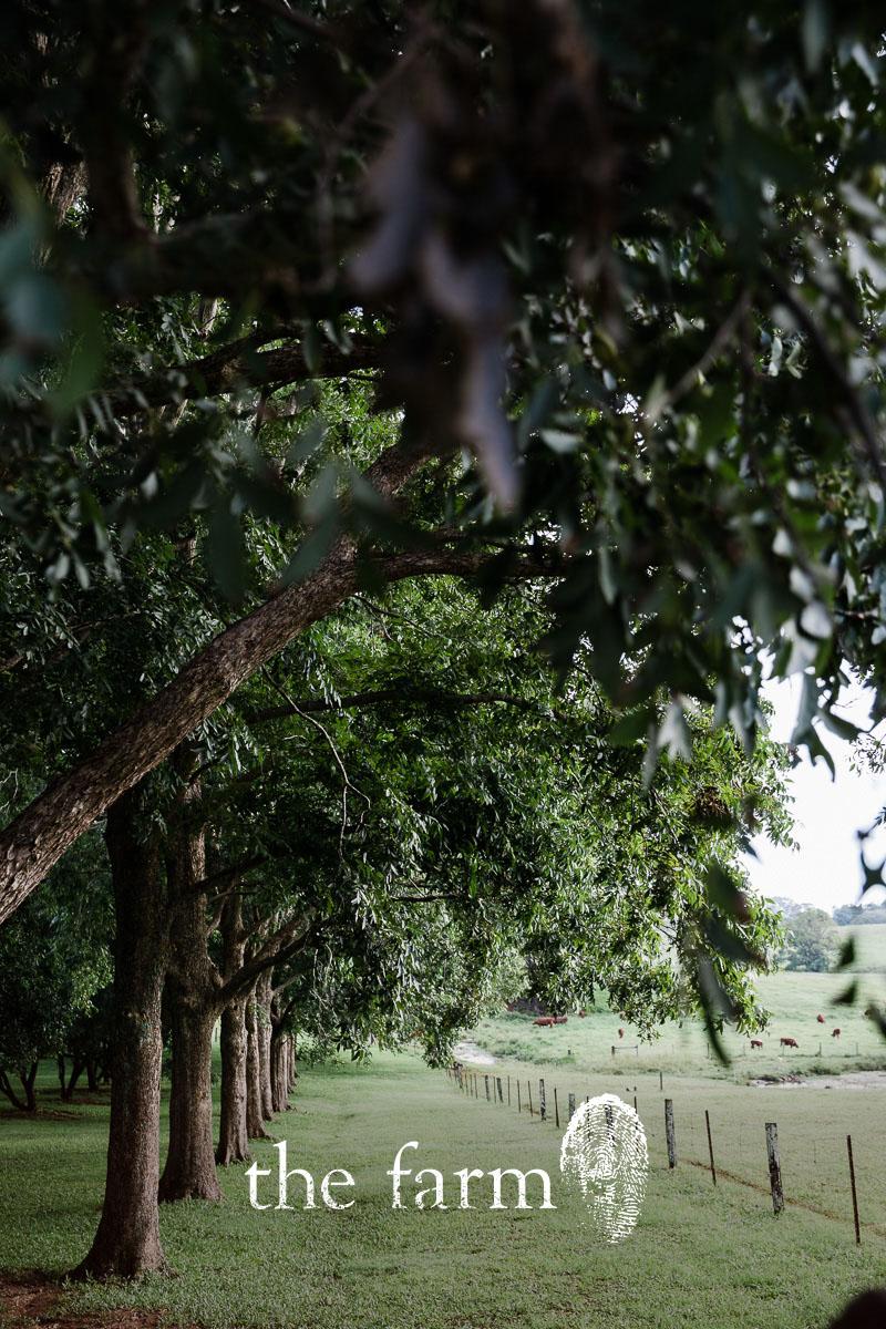 Farmcollec.jpg