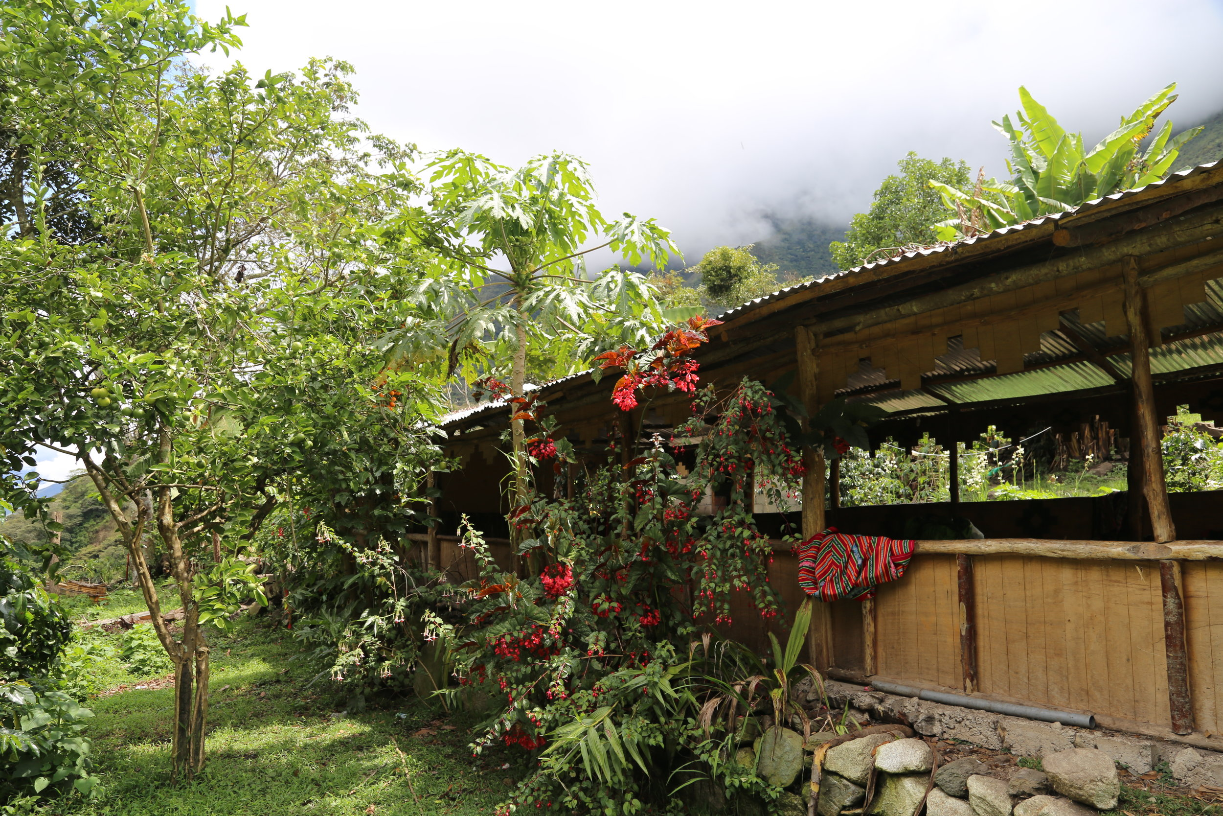 Lunch spot on day 3 of Salkantay Trek to Machu Picchu.
