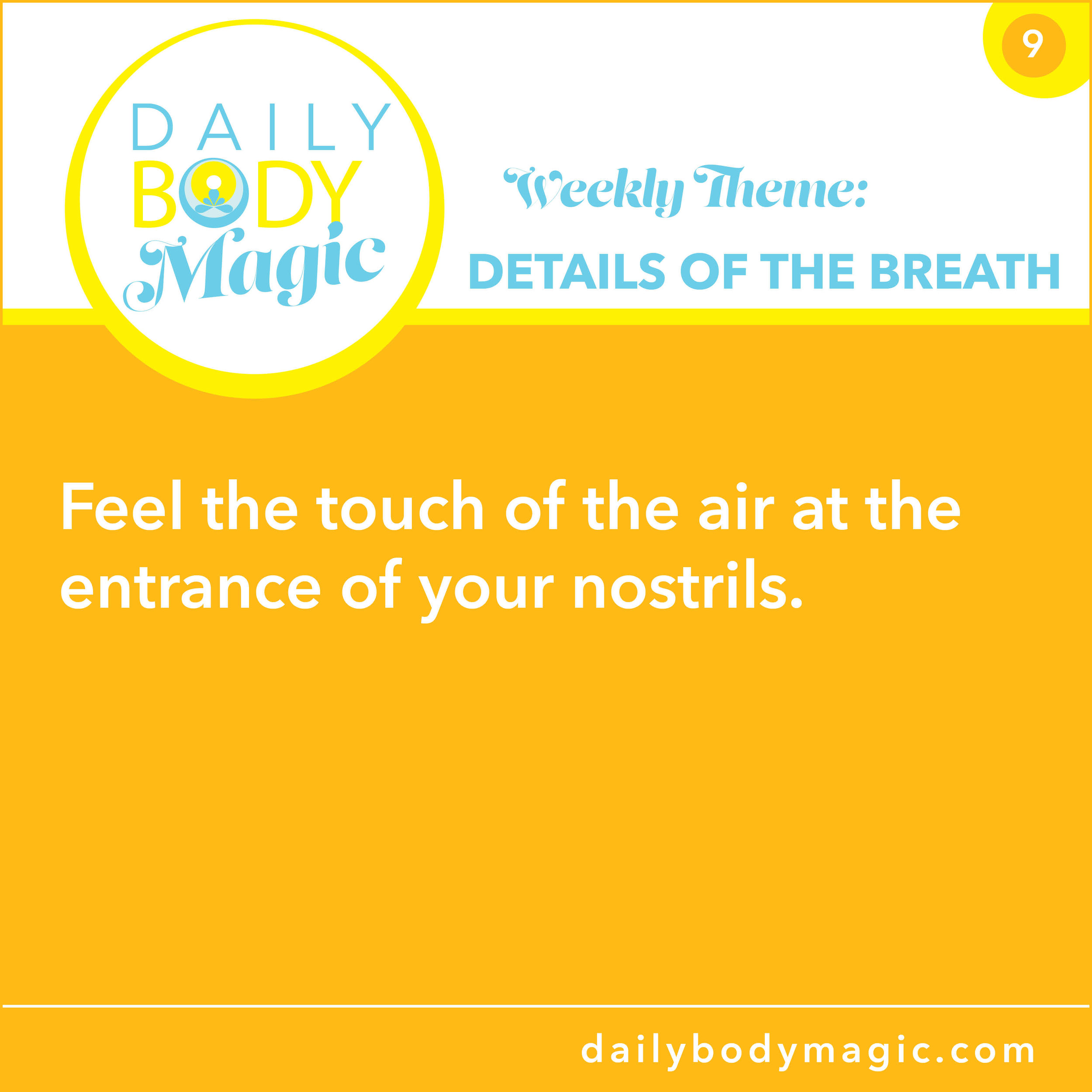 Daily Body Magic -9.jpg