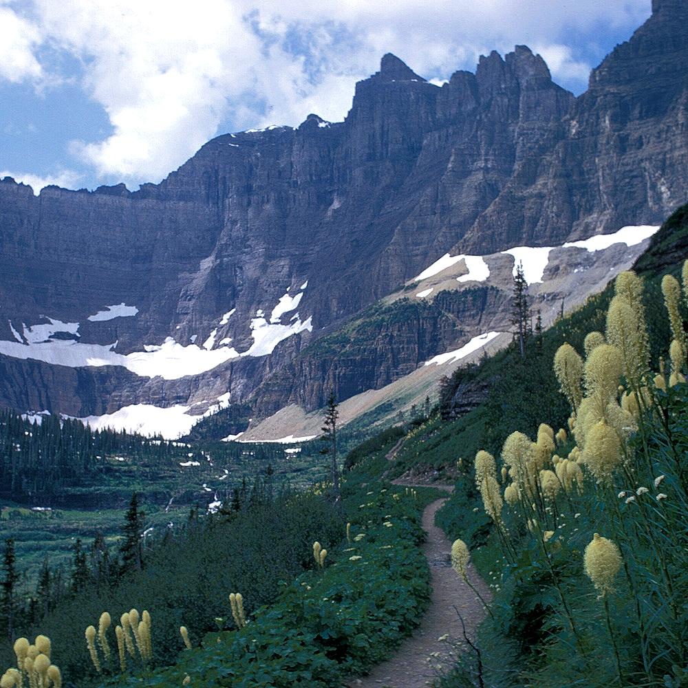 Avalanche Lake, Glacier National Park  (National Park Service)