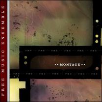 """2006  """"Montage""""  FME Okkadisk OD12071"""