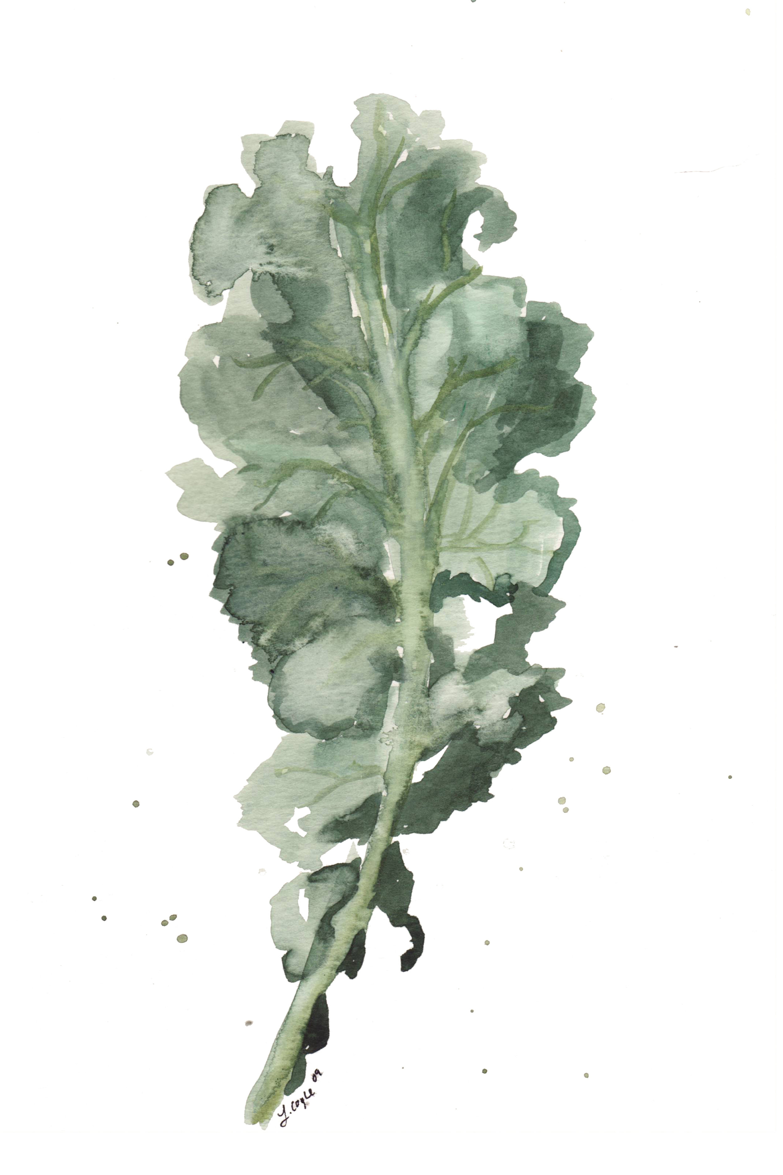 - KALE is a great early spring vegetable to plant. It does well in cooler temperatures and can be planted as soon as the soil is about 40 degrees. The best part? It only needs to grow for a month before you can start harvesting it.