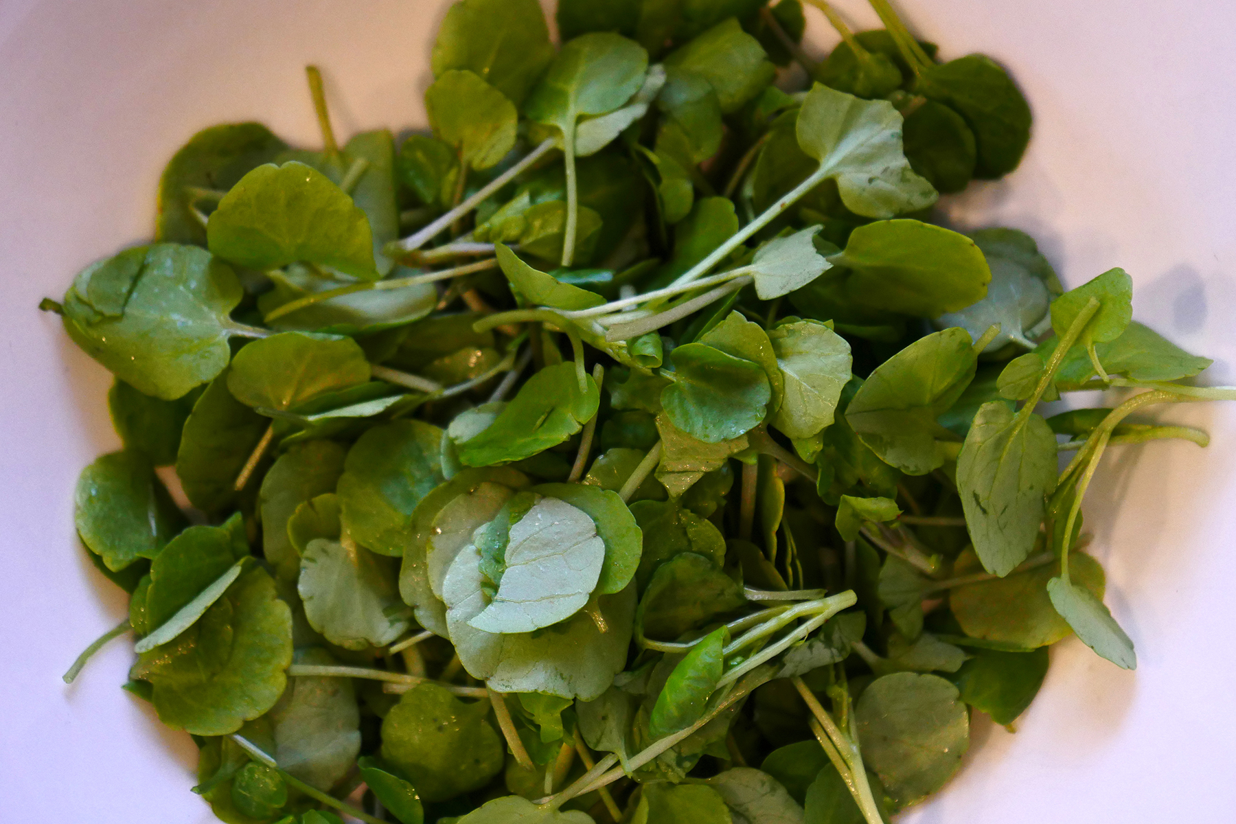 Rather than chop off the watercress and risk bruising the tender leaves, I just pulled the greens off the stems and into a bowl. This is about a half-cup.