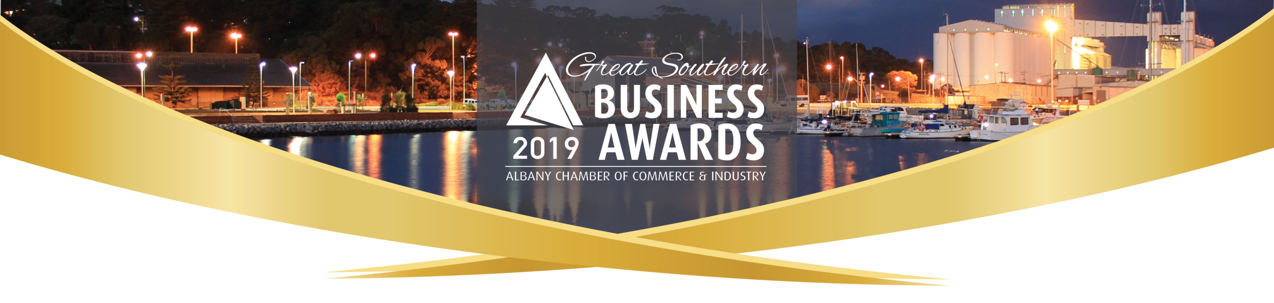 2019 Business Awards Banner Generic White.png