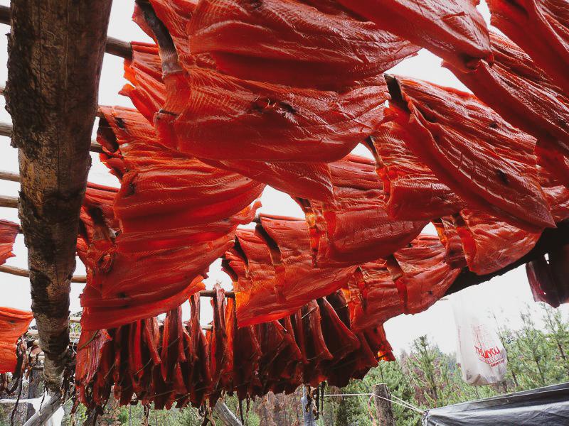 Salmon hanging on rack.jpg
