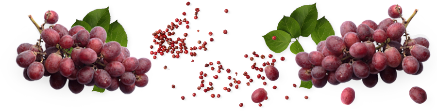 Ruby-Cabernet.png