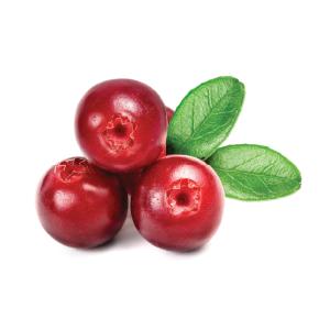 cranberry.png