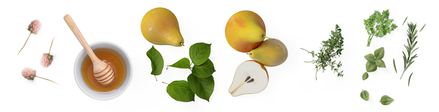 Gribiano-fruity.png