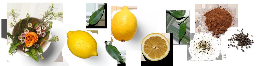 Gewurztraminer-Florals-Spice.png