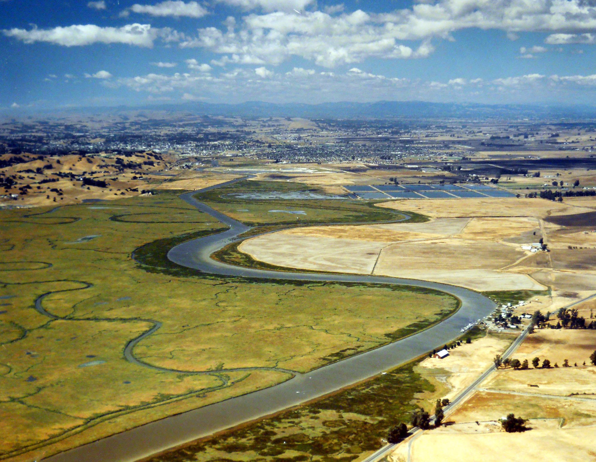 Petaluma-River-0011.jpg