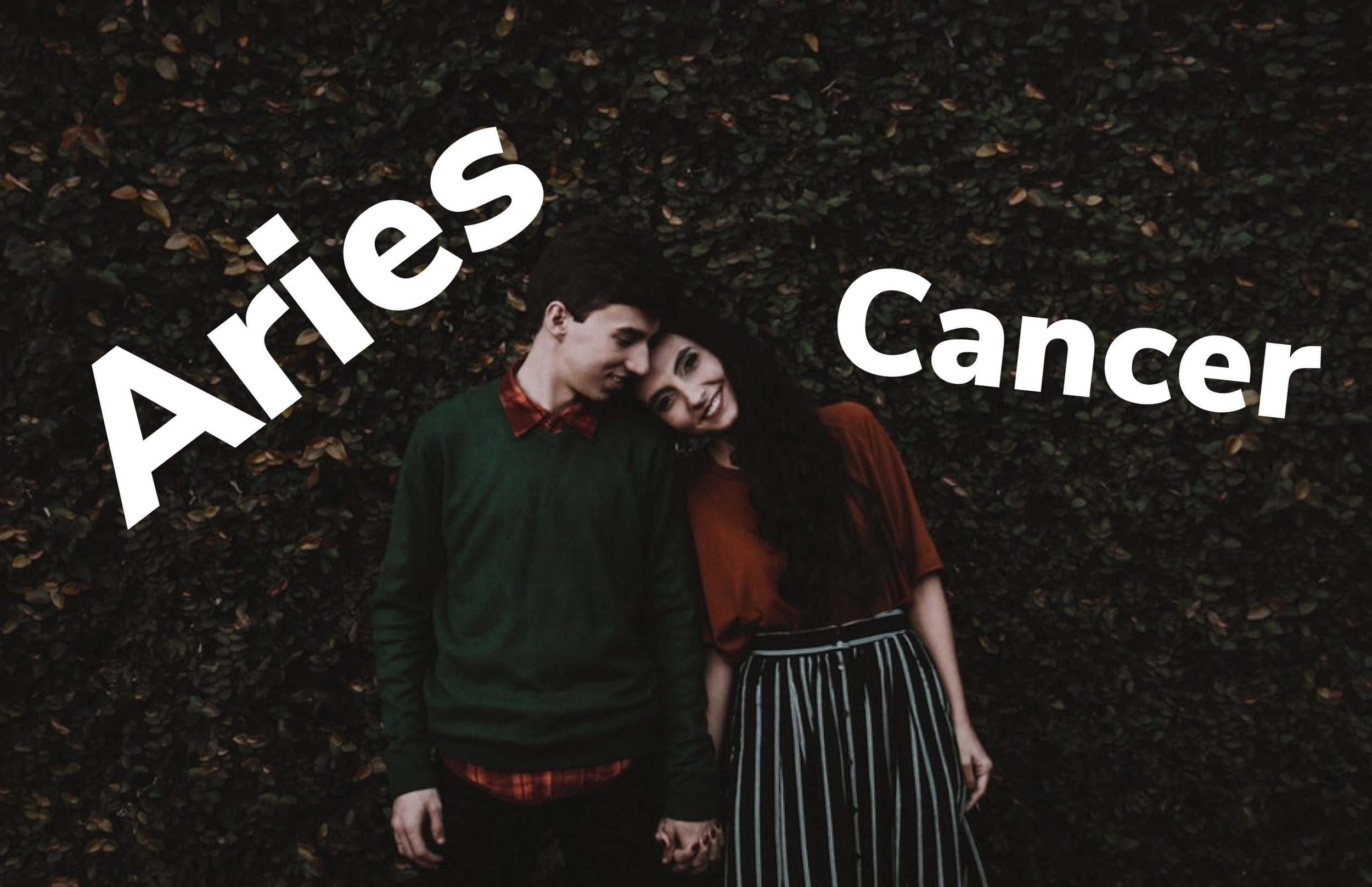 Cancer and Aries relationship compatibility leoaqualibravibes astrology online relationship story