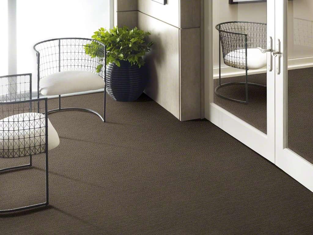 carpet (1).jpg