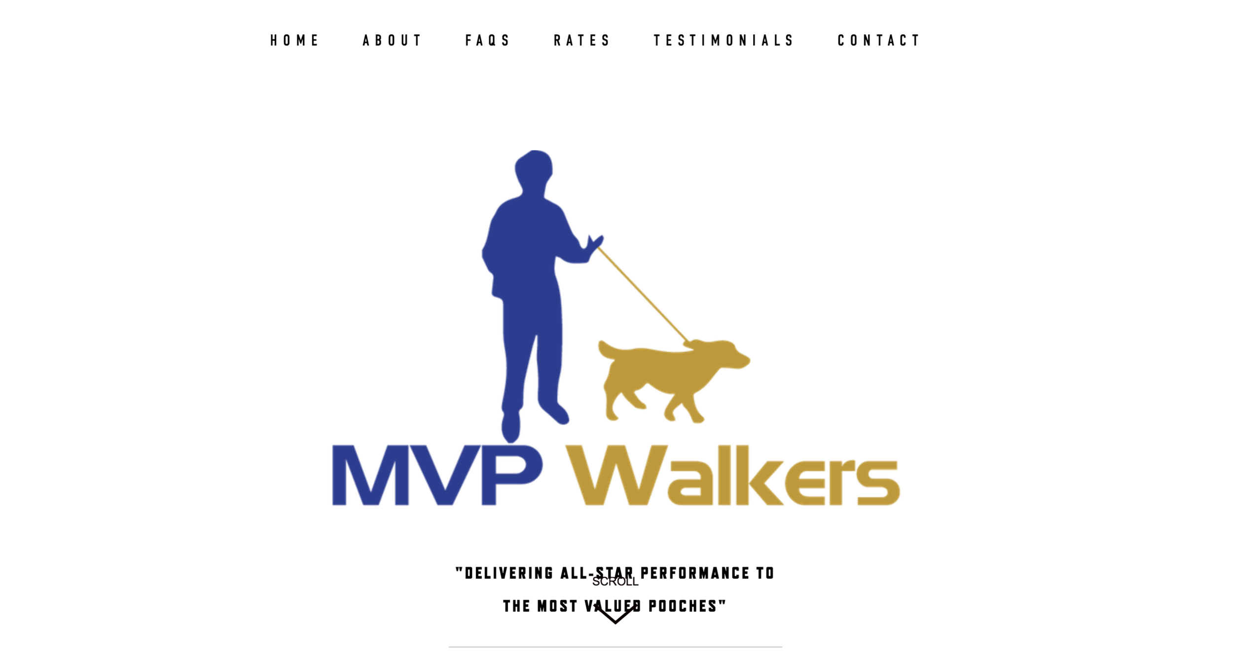 MVP Walkers home page .png