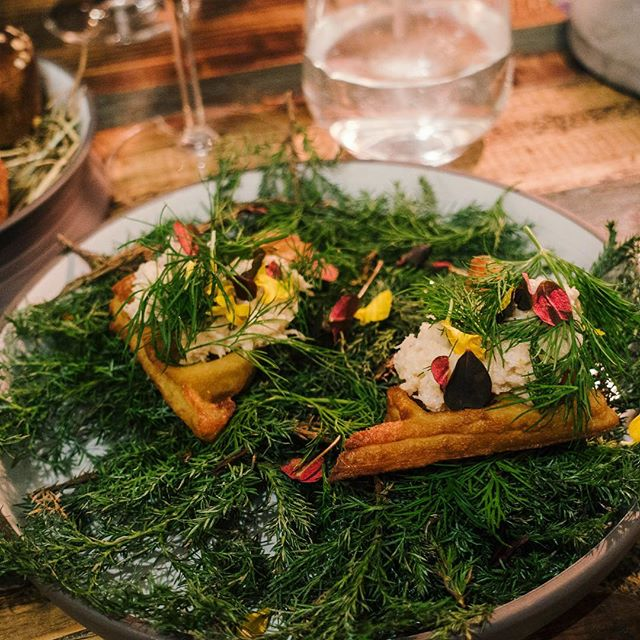 Does a deep fried buttermilk waffle topped with crab salad & dill sound good to you? 😯 Then head to Høst in Copenhagen!! ☝️Read about it on my blog #buttermilk #waffle #crab #newnordiccuisine