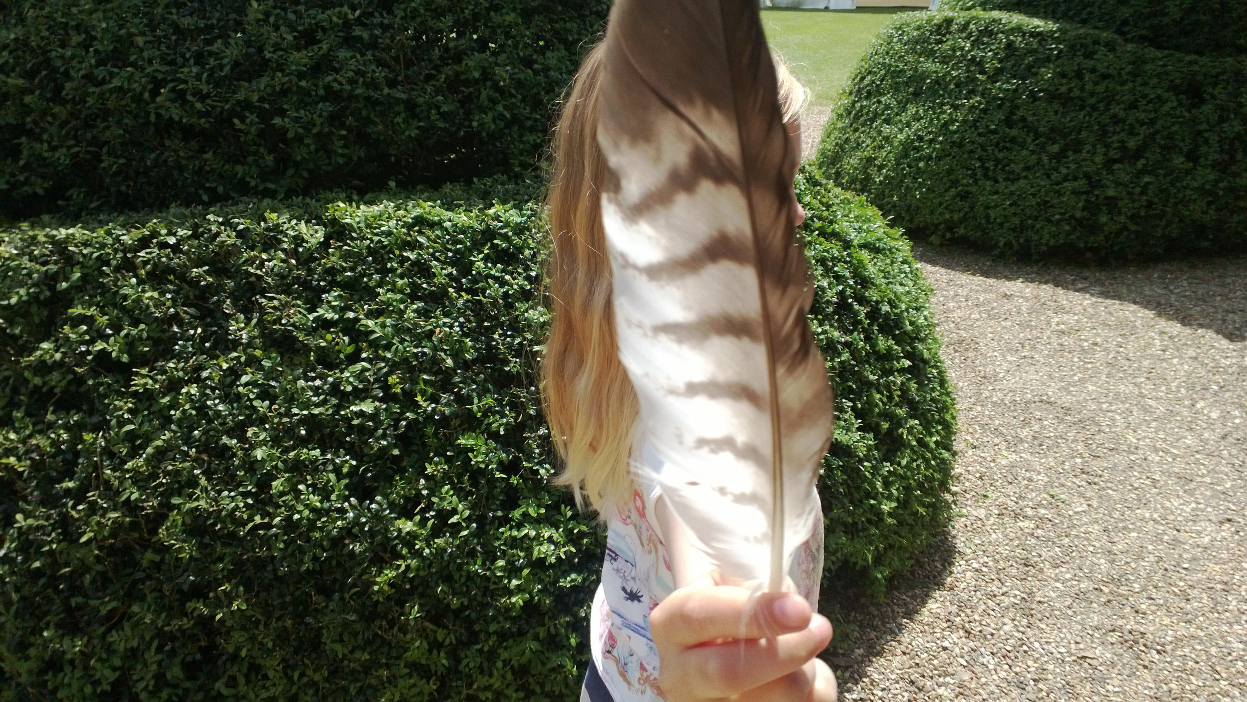 Feather, France © Tanya Clarke 2013
