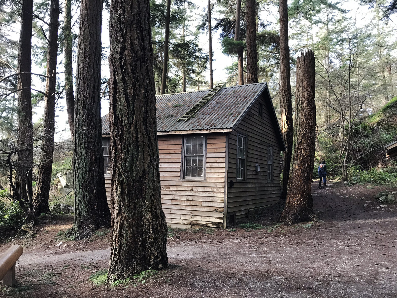 Cabin in the woods, Lighthouse Park in West Vancouver © Tanya Clarke 2018