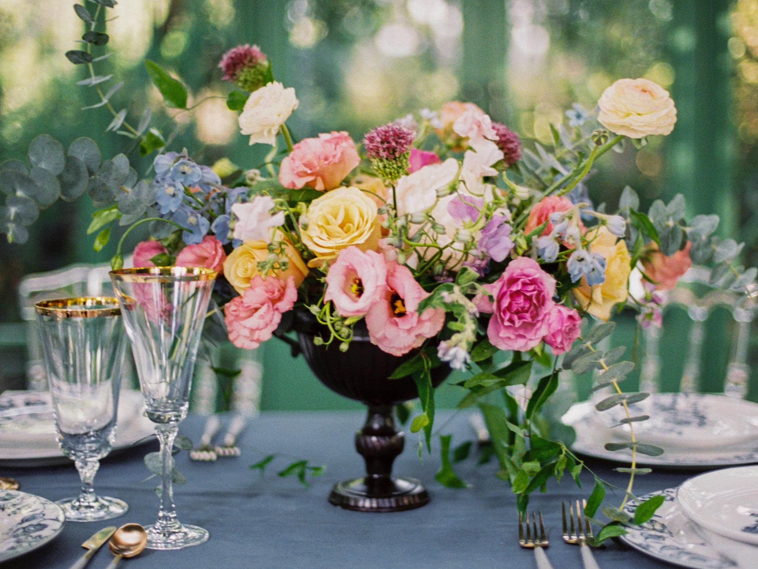 Tara_Bielecki_Photography_Catherine_Botanic_Garden_084.jpg