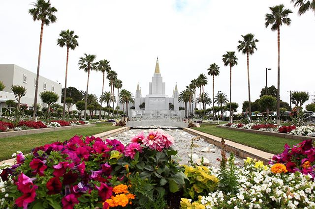 The Oakland Temple Rededication is today, Sunday, June 16, 2019. Sessions will be held at 9am, 12pm, and 3pm at the temple and will be broadcast. All members of the @churchofjesuschrist within the 31 stakes of the Oakland Temple District are invited to view the broadcast at their stake centers and other designated Stake buildings. Please remember to bring a white handkerchief and your temple recommend (regular temple recommend, limited use recommend, or special one-day Rededication recommend).