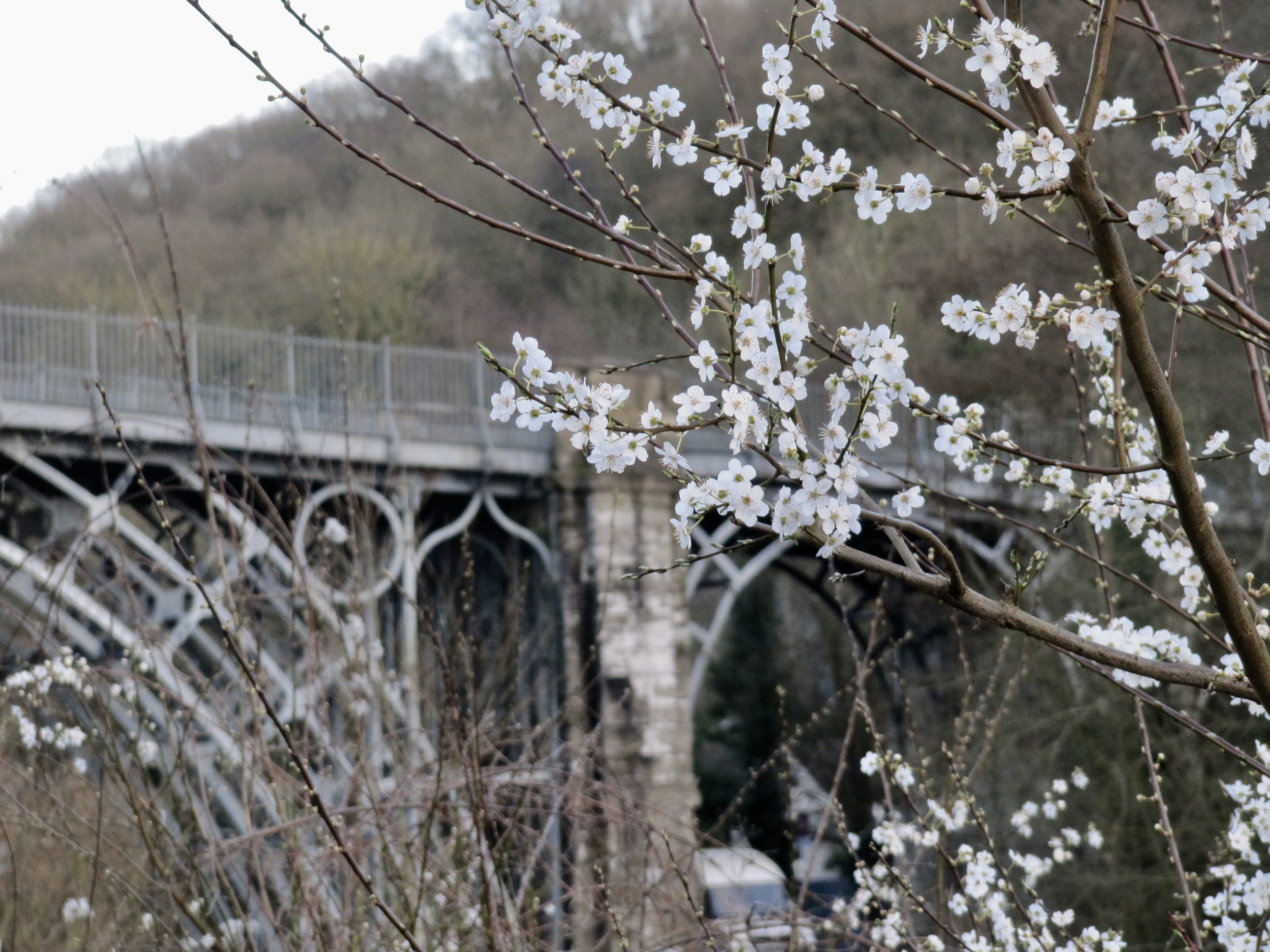 ironbridge.jpeg