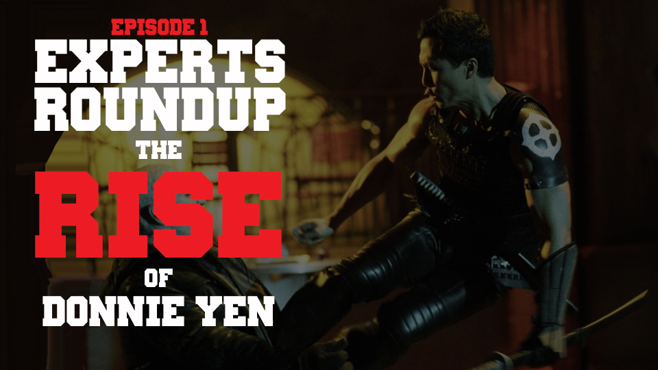 the-rise-of-donnie-yen.jpg
