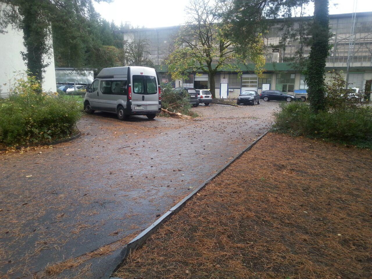 Facyliti_Reinigung_Sturm[1].jpg