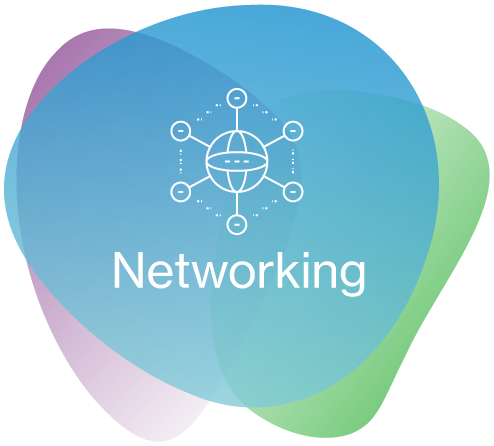 NETWORKING    We know what makes you tick. We keep you ticking along nicely.