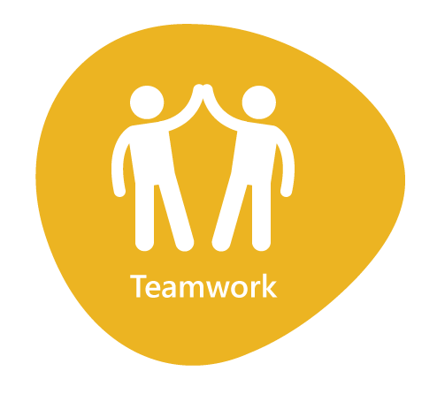 Work together using effective communication and collaboration. Listen and inspire others.