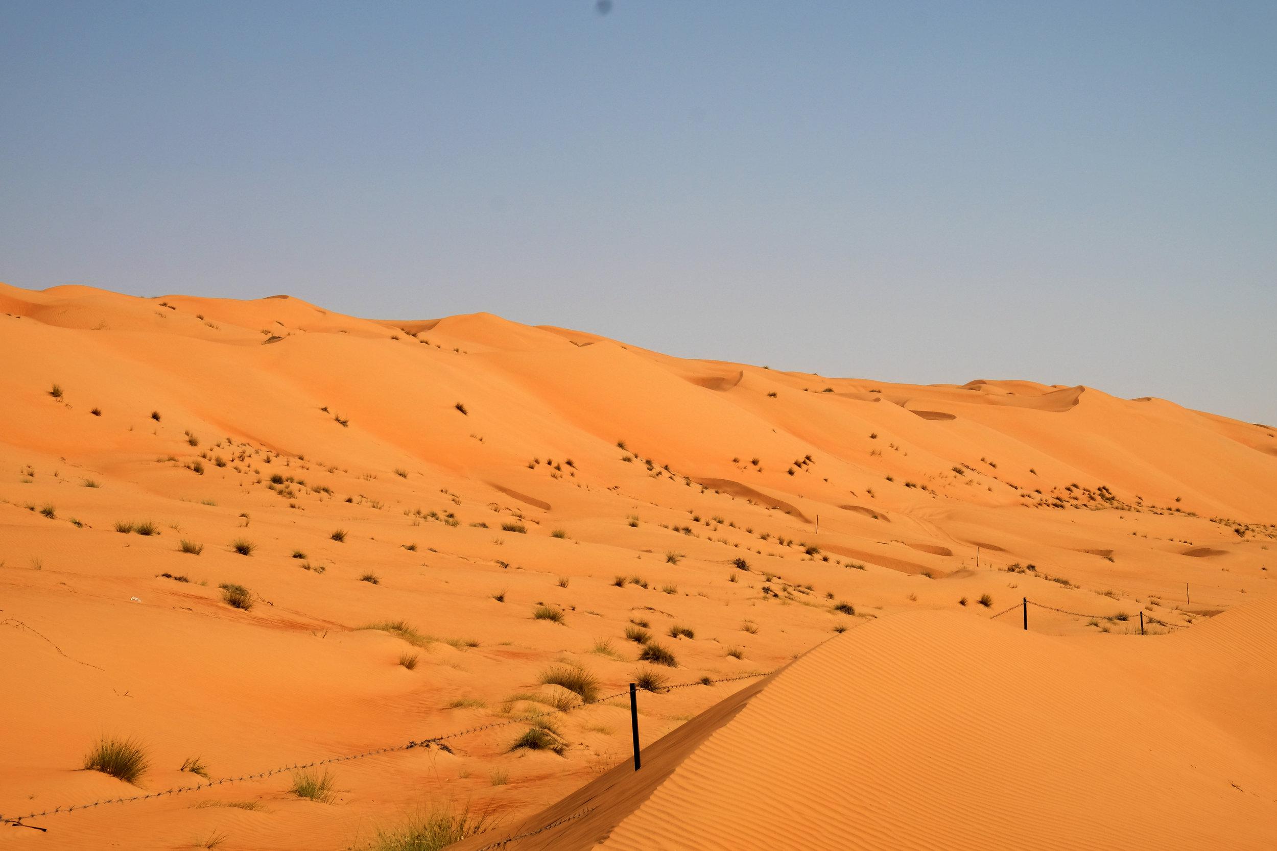 Arzucan Nur Askin    Unstoppable (March 2018, Wahiba Sands Desert, Oman)