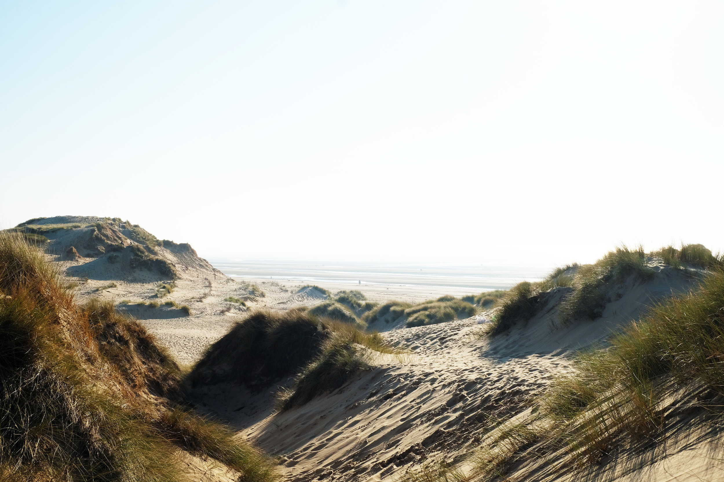 arzucan nur askin   White Dunes (May 2018, Formby Beach, United Kingdom)