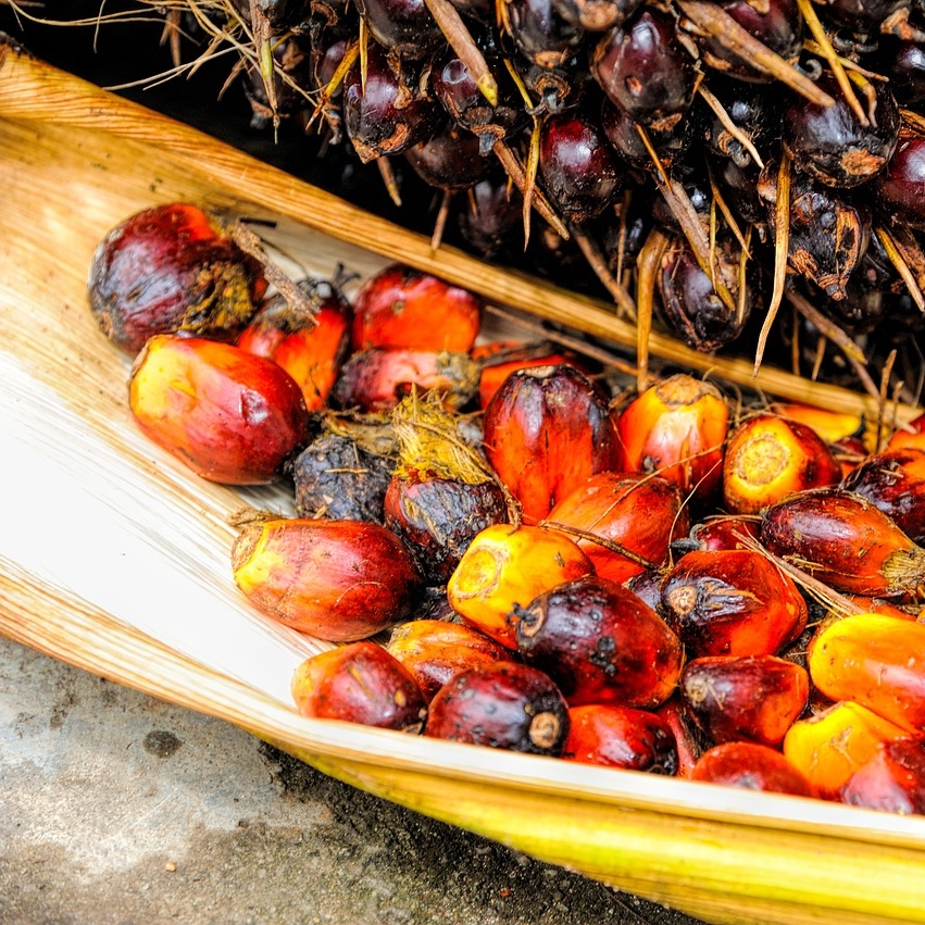 no palm oil, no problem? not really.