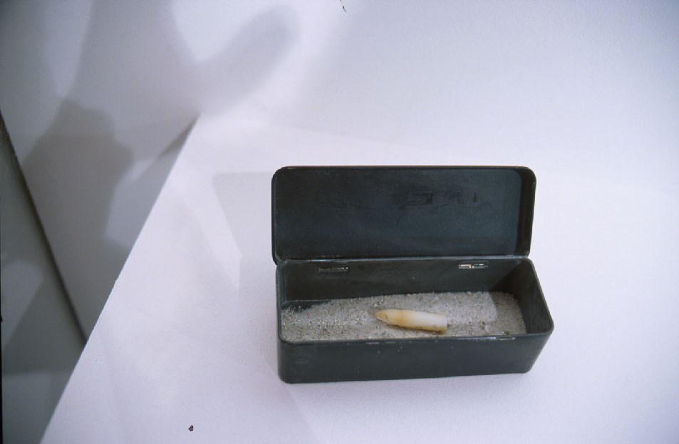 Untitled (soap bullet, glacial dust, metal box)