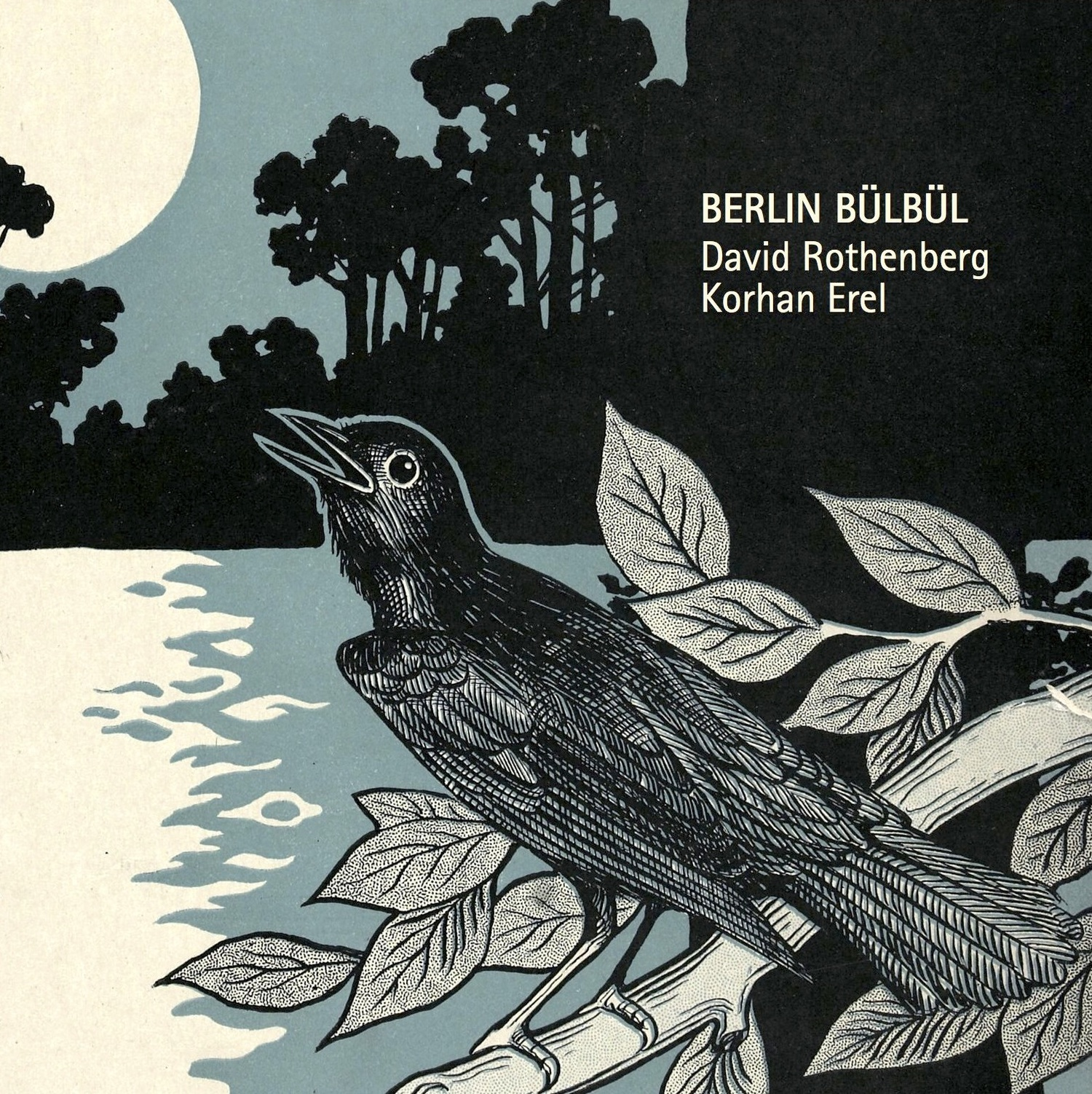Berlin Bülbül - David Rothenberg and Korhan Erel's midnight jam with Berlin's fabulous singing nachtigals. About half the tunes on the album are live human/nightingale encounters, and the rest are constructions mixing clarinets and electronic mysteries.