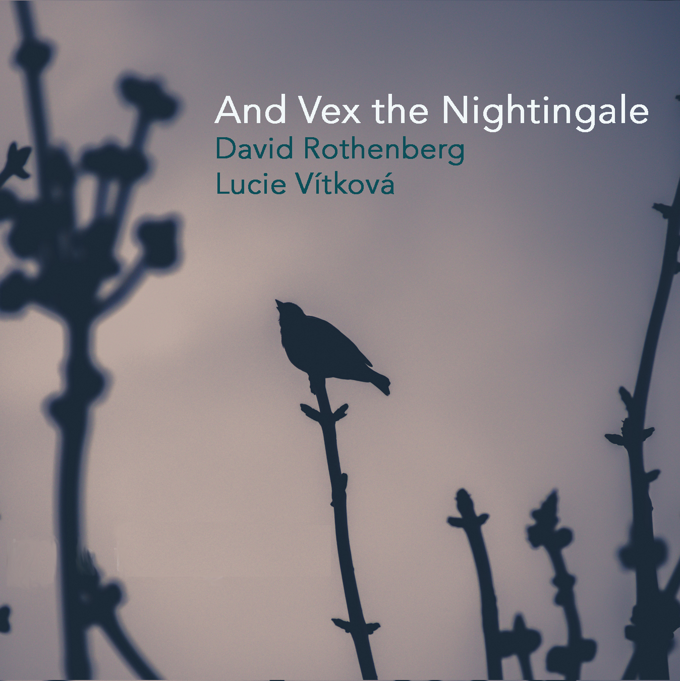And Vex the Nightingale - David Rothenberg and Lucie Vítková. A single 43 minute long performance from the Treptower Park at midnight—What two people and one bird can do.