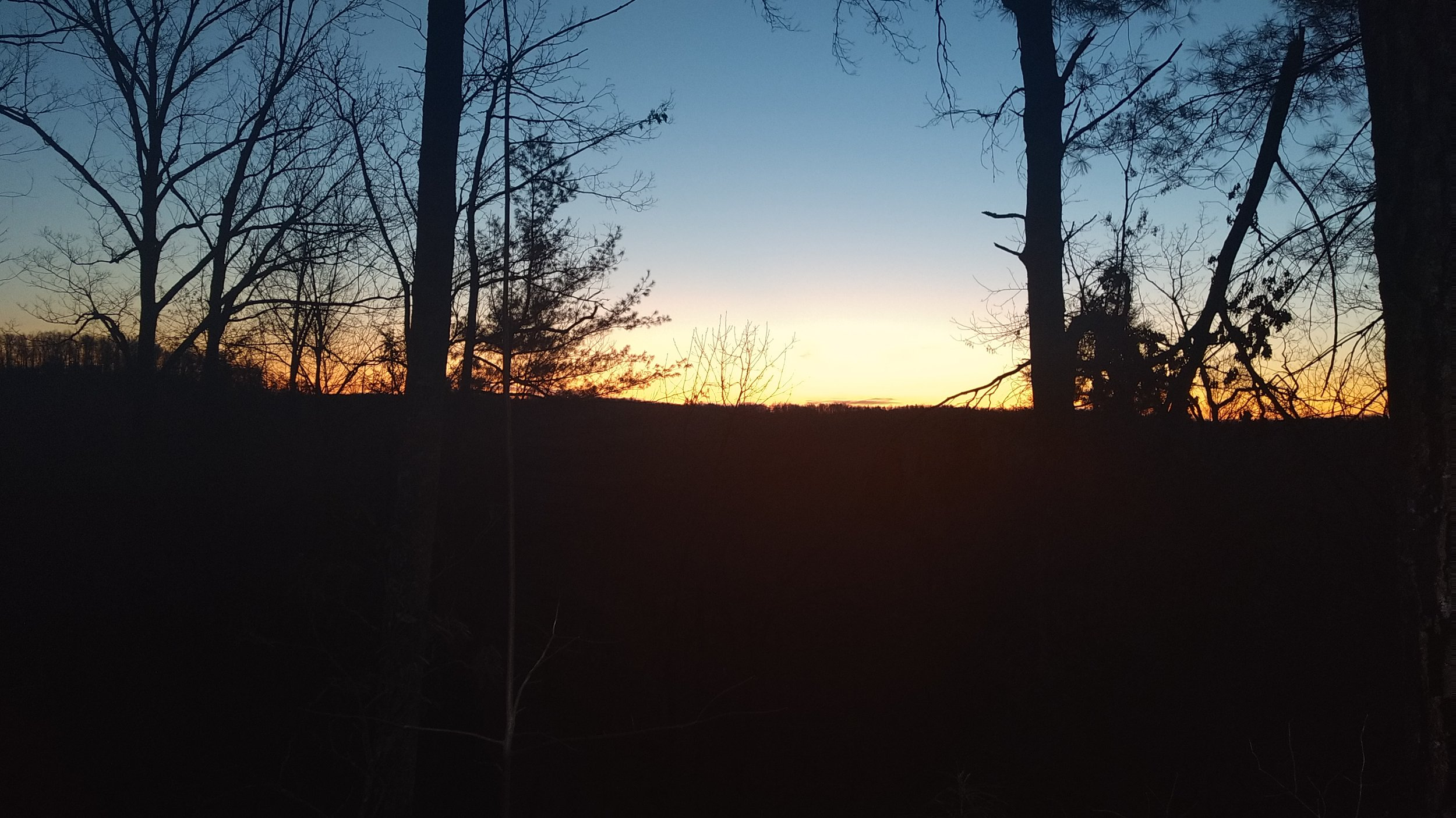 Dawn from Rough Trail.jpg