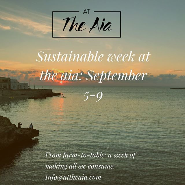 Learn to make what we consume. From homemade pasta, to shower scrubs, to soap, and even liquor- this long weekend is all about living sustainable. You leave with a cookbook of recipes- and a basket of goodies- and of course and experience is our special Salento. Link in bio ☀️ #attheaia