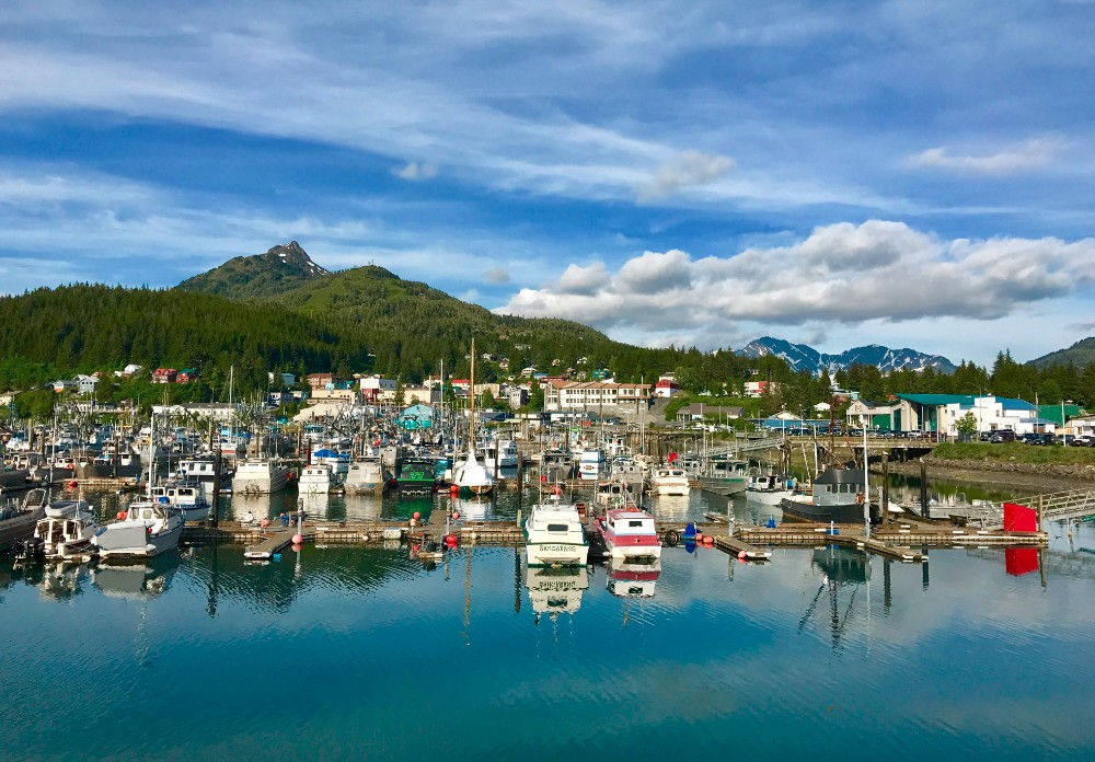 Cordova, Alaska harbor.  The Copper River is nearby. Where the highest quality salmon swim.