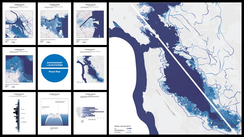 Environment + Ecosystems: Flood Risk, by Cassady Kenney